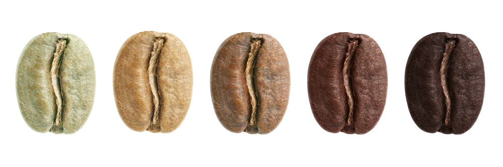 Verschiedene Röstungsgrade einer Kaffeebohne